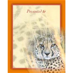 Bookplates Small - African Safari 115 x 90mm