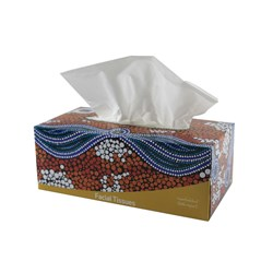 Cultural Choice Facial Tissues 2 Ply