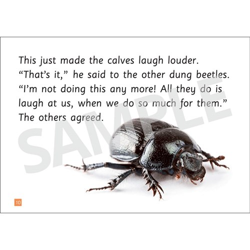 Insect Storybooks - Doug the Dung Beetle