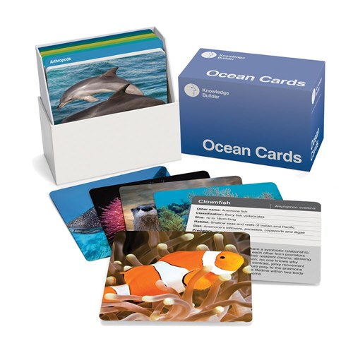 Ocean Cards - 100 x 100mm Laminated Set