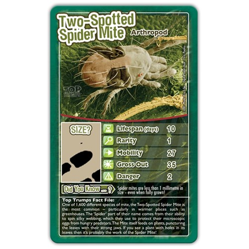 Top Trumps Card Game - Bugs